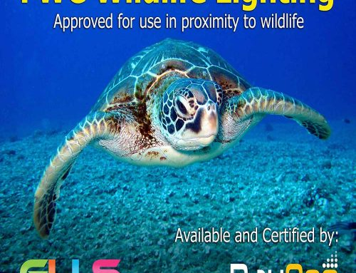 Marine Certified Lighting and Sea Turtle Certified Lighting